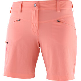 Salomon Wayfarer Shorts Women red